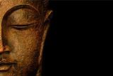 Bronze Budda Giclee Print by  Whoartnow
