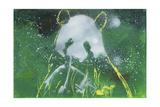 Panda Bear Giclee Print by  Whoartnow