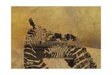 Zebras on Ochre Giclee Print by  Whoartnow