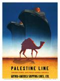Palestine Line - Gdynia-America Shipping Lines - Polish Ocean Liners SS Kosciuszko and SS Polonia Kunstdrucke von Tadeusz Trepkowski