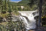 Canada, Alberta, Jasper National Park, Athabasca Falls Reproduction photographique par Jamie & Judy Wild