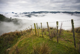 Farmlands in Whakahoro, in the Whanganui NP of New Zealand Reproduction photographique par Micah Wright