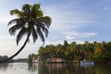 Houseboat, Backwaters, Alappuzha or Alleppey, Kerala, India Impressão fotográfica por Peter Adams