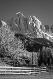 Autumn at Geisler Spitzen, Dolomites, Trentino-Alto-Adige, Italy Photographic Print by Brian Jannsen