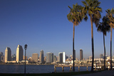 USA, California, San Diego. San Diego Skyline and Palm Trees Reproduction photographique par Kymri Wilt