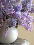 Lilac Flowers in Vase Photographie par Anna Miller