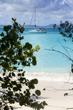 Buck Island, Saint Croix, Us Virgin Islands. Sailboat Foto av Janet Muir