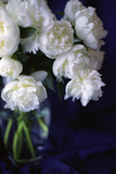 White Peonies in a Vase Photo by Anna Miller