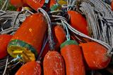 USA, Oregon, Garibaldi. Colorful Crab Pot Buoys Foto av Jean Carter