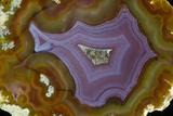 Banded Agate, Quartzsite, AZ Photo by Darrell Gulin