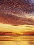 USA, California, San Diego, Sunset over the Pacific Ocean Foto av Christopher Talbot Frank