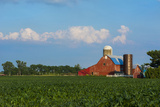 Farm with Red Barn and Corn, Milford Center, Ohio Foto von Bill Bachmann