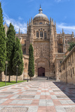 Europe, Spain, Salamanca, Cathedral Exterior Foto van Lisa S. Engelbrecht