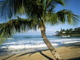 Usa, Hawaii Islands, Maui, View of Napili Bay Foto av Douglas Peebles