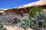 Double Stack Anasazi Ruin in Butler Wash, Cedar Mesa, Utah Fotografía por Richard Wright