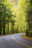 Tennessee, Great Smoky Mountains NP, View Along Little River Road Foto von Jamie & Judy Wild