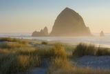 Evening Sunlight over Haystack Rock and the Cannon Beach, Oregon, USA Foto av Brian Jannsen
