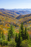 North Carolina, Great Smoky Mountains NP, View from Newfound Gap Road Foto av Jamie & Judy Wild
