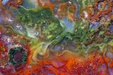 Agate in Colorful Design, Sammamish, WA Photo by Darrell Gulin