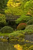 Moon Bridge, Spring, Portland Japanese Garden, Portland, Oregon, USA Photo by Michel Hersen