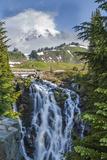 Braided Myrtle Falls and Mt Rainier, Skyline Trail, NP, Washington Foto av Michael Qualls