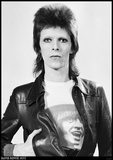 David Bowie- The Man Who Sold The World Kunstdruck