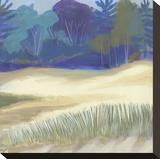 Coastal Dunes I Stretched Canvas Print by Cathe Hendrick