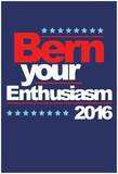 Bern Your Enthusiasm 2016 Posters