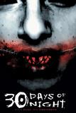 30 Days of Night - Cover Art Plakat av Ben Templesmith