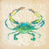 Sealife Crab Affiches par Julie DeRice