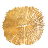 Gold Sand Dollar I (gold foil) Affischer av Jairo Rodriguez