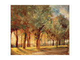 The Judges' Walk, Hampstead, c. 1820 Giclee Print by John Constable