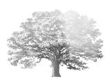 Silver Foil Elephant Tree Kunst af  Vision Studio