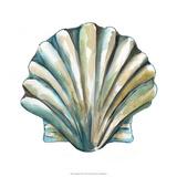 Aquarelle Shells VI Giclee Print by Chariklia Zarris