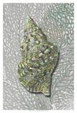 Hifi Triton I Affiches par James Burghardt