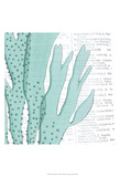 Aqua Marine V Prints by Anna Hambly