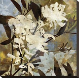 Floral Eclipse I Stretched Canvas Print by Paul Duncan