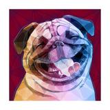 Laughing Dog Giclée-Premiumdruck von Enrico Varrasso