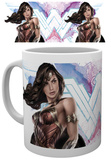 Batman v Superman Wonder Woman Mug Mug