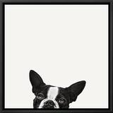 Loyalty Framed Canvas Print by Jon Bertelli