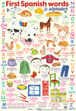 First Spanish Words & Alphabet Poster