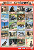Wilde Tiere Poster