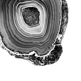 Grey Agate D Premium Photographic Print by  THE Studio