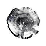Tree Ring Abstract I Prints by Ethan Harper
