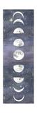 Moon Chart II Affiches par Naomi McCavitt