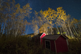 The Graveyard at Little Salmon Village, and Surrounding Trees, Illuminated at Night Photographic Print by Peter Mather
