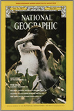 Cover of the May, 1977 National Geographic Magazine Impressão fotográfica por Bianca Lavies