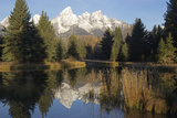 The Teton Range and Evergreen Forests, and their Reflections in the Snake River Photographic Print by Marc Moritsch