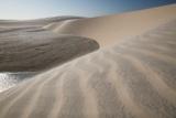 A Sand Dune Near Jericoacoara, Brazil Fotografisk tryk af Alex Saberi
