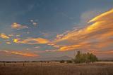 Lenticular Clouds Glow in a Sunset over Pastures in Montana's Gallatin Valley, Near Bozeman Lámina fotográfica por Gordon Wiltsie